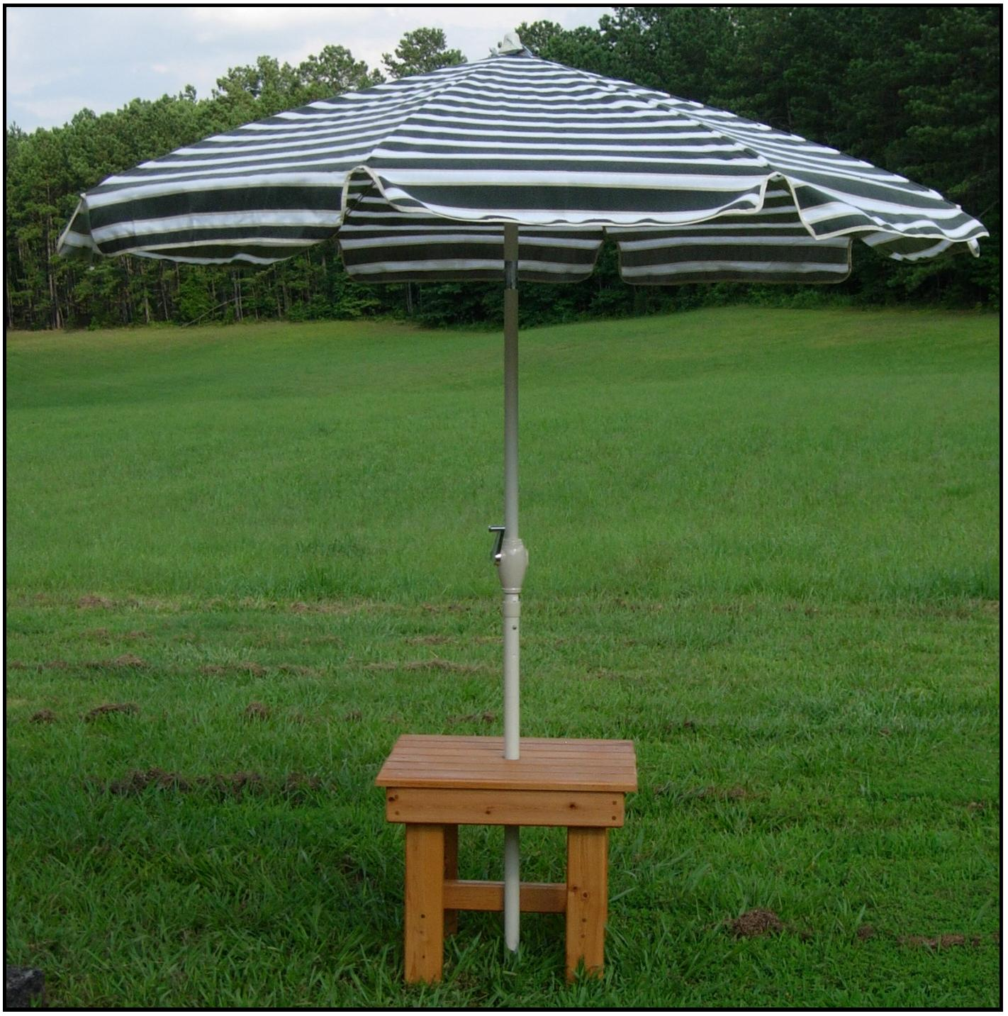 picnic plus wood folding picnic table w umbrella luggage